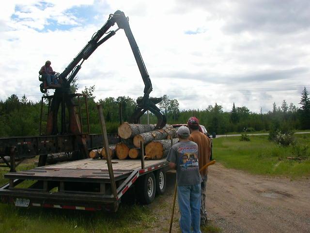 FarmTrees 021
